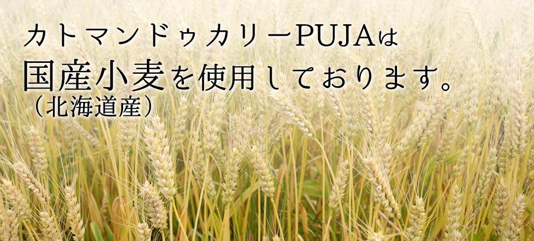 カトマンドゥカリーPUJAは国産小麦(北海道産)を使用しております。